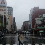 TOKYO ESENCIAL BAJO LA LLUVIA.