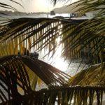 St Maarten……por casualidad