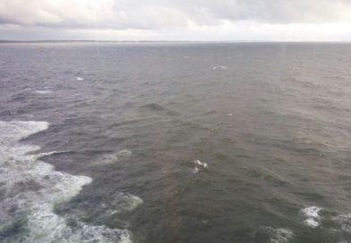 ¿Que hacer en un día en alta mar?