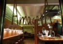 A MACETA: El Jardín de las Delicias