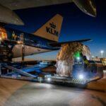 """Vuelos """"carga en cabina"""" de KLM"""